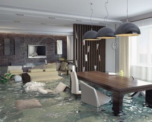 water-damage-cairns-chemsafe-SMALL
